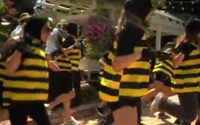 Do the Honey Bee